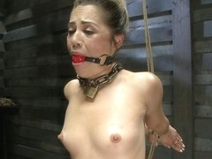 were visited britain erotic video think, what lie